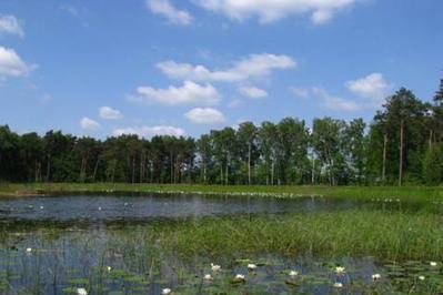 Image Natur- und Landschaftspflege