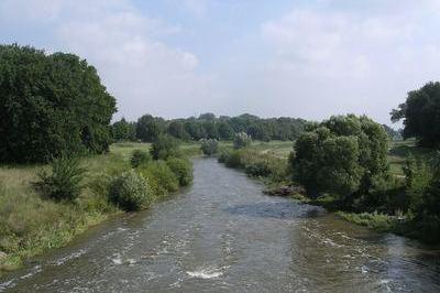 Image Gewässer