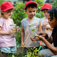Bild vergrößern: Teacher and kids school learning ecology gardening