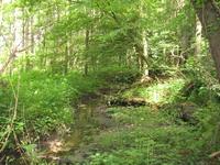 Landschaftsbild Wöhrener Siek
